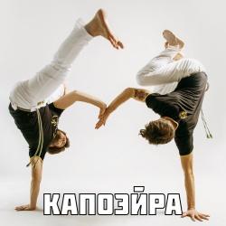 6_capoeira_volgar